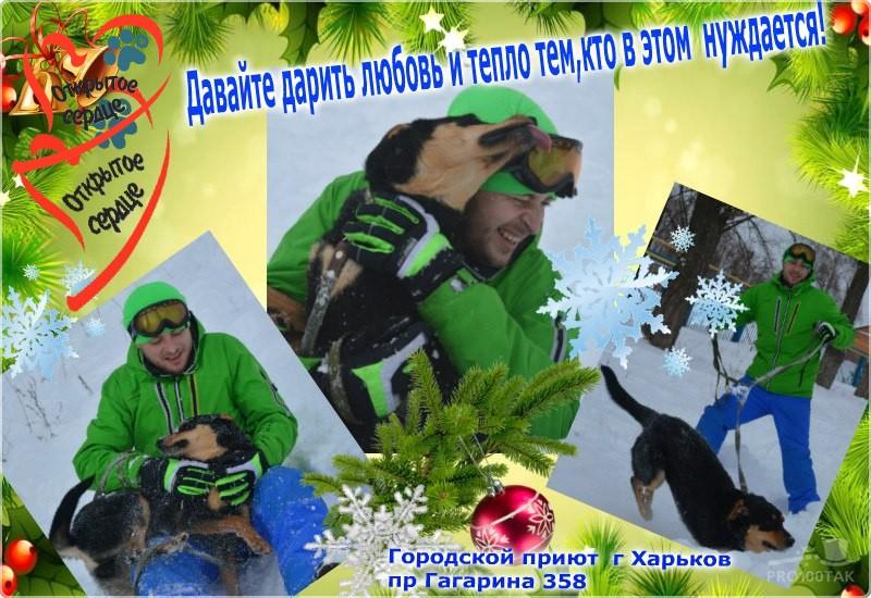 gai6tqe4ios1