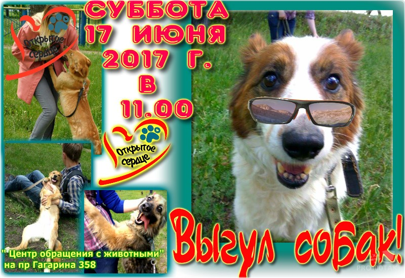 pro100tak-3_5_2017-22_3_7 222